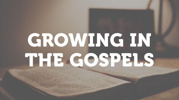 class-image-growing-in-the-gospels